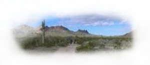 Eagle Tail Mountain Wolf Sanctuary