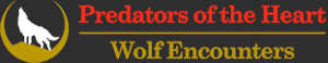 predators of the heart wolf encounters