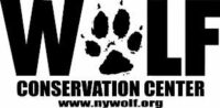 wolf conservation center ny