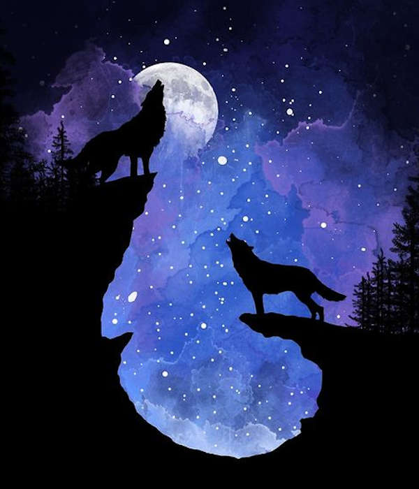 wolf decor collection showing two wolves howling at the moon on rocks