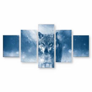 gray wolf walking in snow