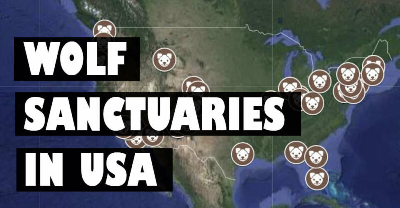 wolf sanctuaries in usa map